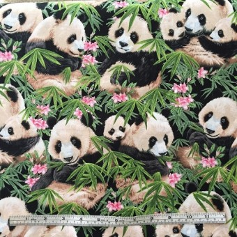 Pandas in Bamboo by HR for SCS designs - Patt 1230