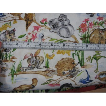 Burrangong Creek Kids - baby Australian animals by Kennard & Kennard