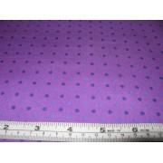 purple spots on crocus