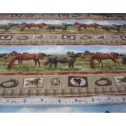 Stripes of horses by Giordano Studios