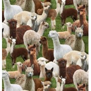 Farm Animals (alpacas) by Elizabeth Studios